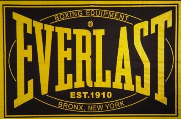 best everlast punching bag reviews